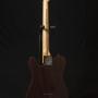 Fender-Telecaster Sunburs-10