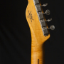 Fender-Custom-Shop-Thinline-Telecaster-Daphne-Blue-15
